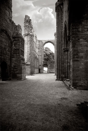 Ruined Abbey 2